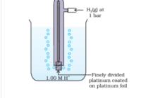 इलेक्ट्रोड विभव (electrode potential) , ऑक्सीकरण विभव , अपचयन विभव , मानक इलेक्ट्रोड विभव (standard electrode potential)